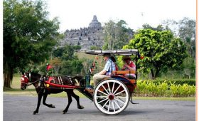 experience rural Java's traditional life. When visiting the impressive Borobudur Buddhist Temple in Central Java