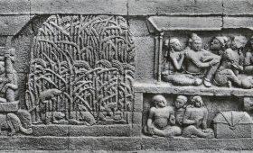 Borobudur Temple Amazing stone carvings